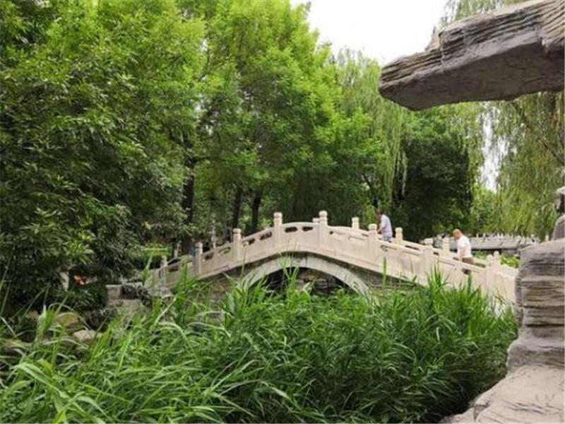 天津这个百年历史的公园,不仅有北方古典园林的幽美,而且还免费